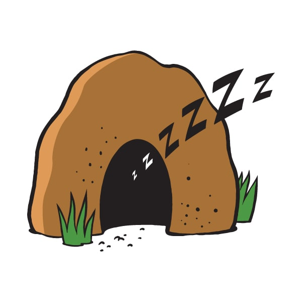 cartoon sketch of small cave for sleeping cat