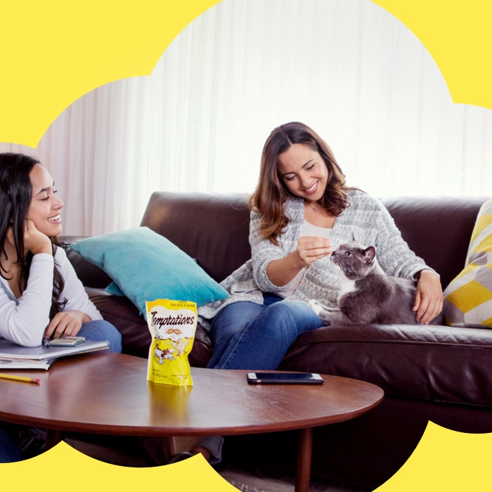 two women playing with cat on couch with a bag of temptations treats