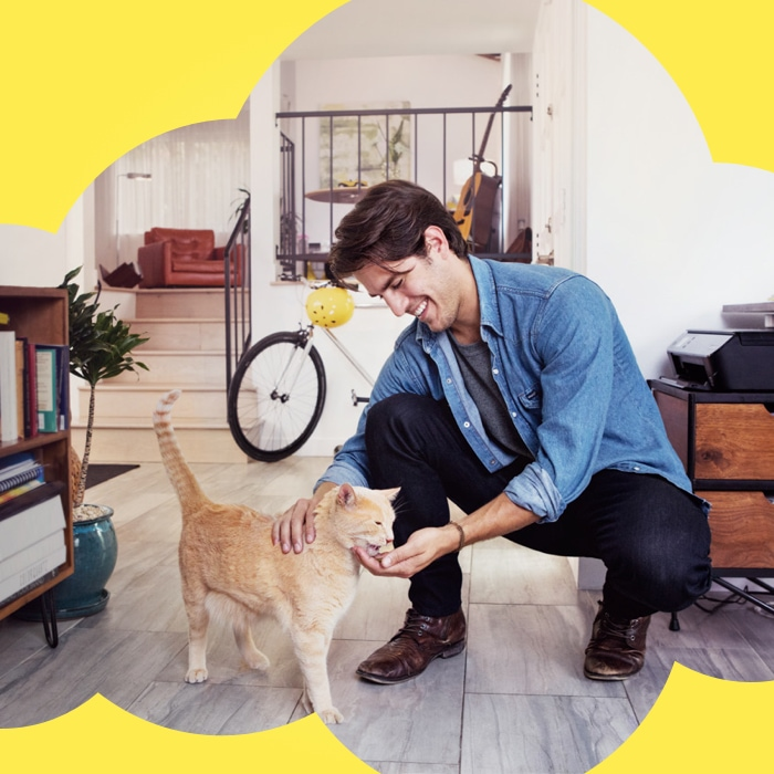 man kneeling down and petting yellow cat and giving it a temptations treat