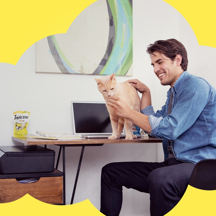man petting yellow cat on computer table and a bag of temptations treats